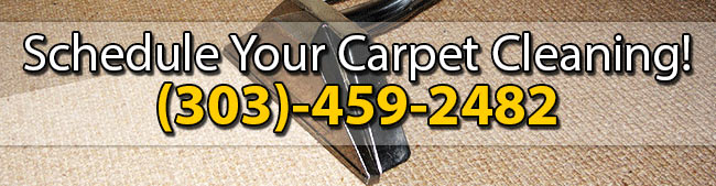 Schedule a Carpet Cleaning in Denver, Colorado